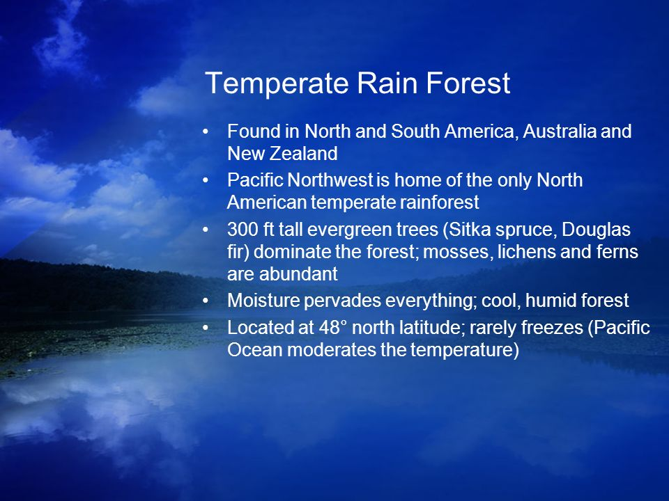 Temperate Rain Forest Found in North and South America, Australia and New Zealand.