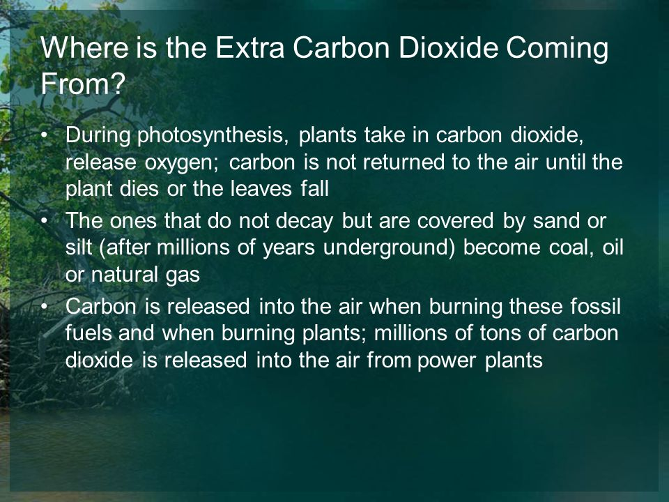 Where is the Extra Carbon Dioxide Coming From