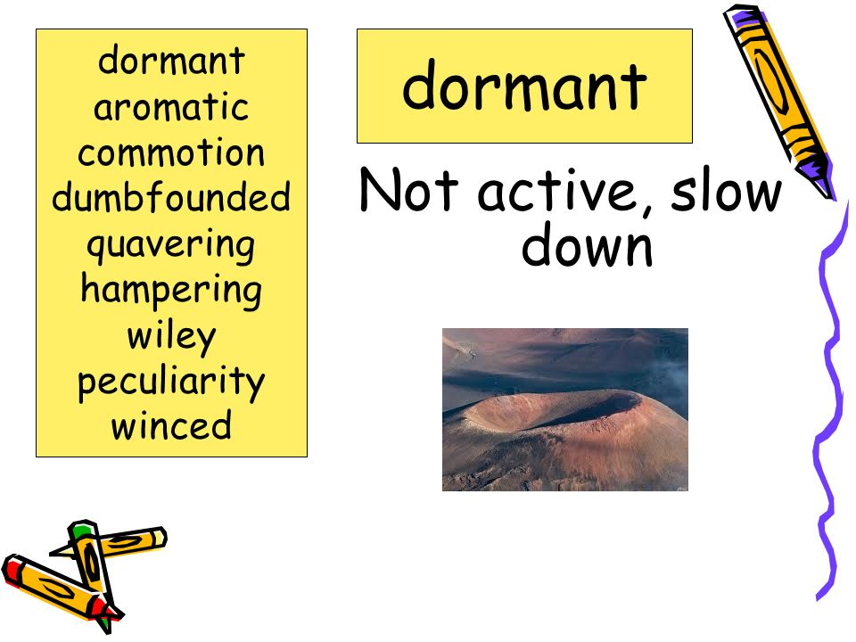 dormant Not active, slow down dormant aromatic commotion dumbfounded