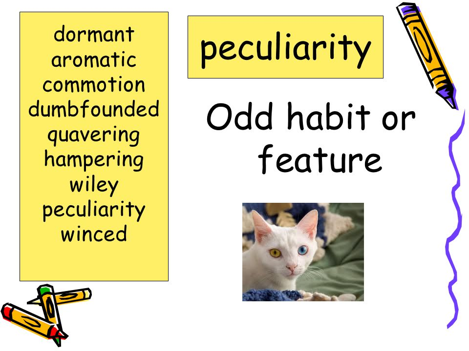 peculiarity Odd habit or feature dormant aromatic commotion