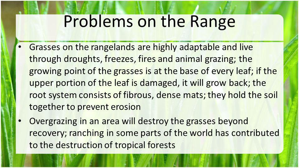 Problems on the Range