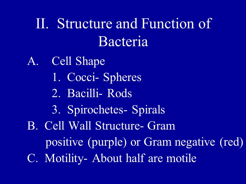 II. Structure and Function of Bacteria