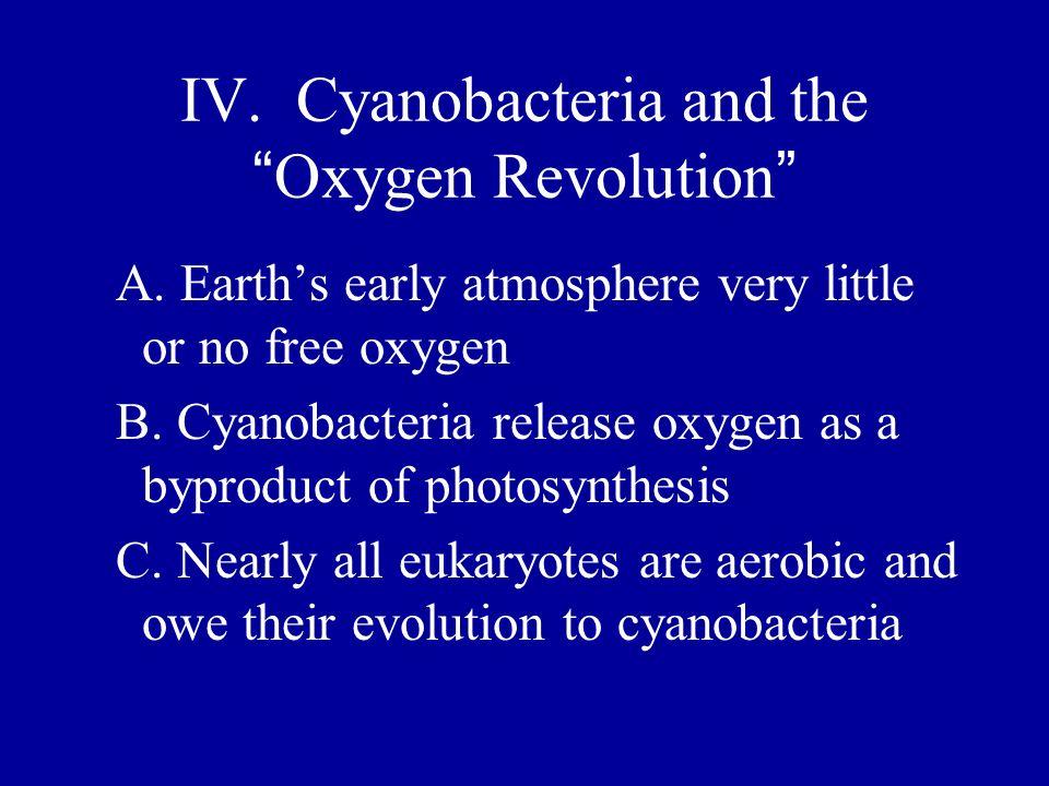IV. Cyanobacteria and the Oxygen Revolution