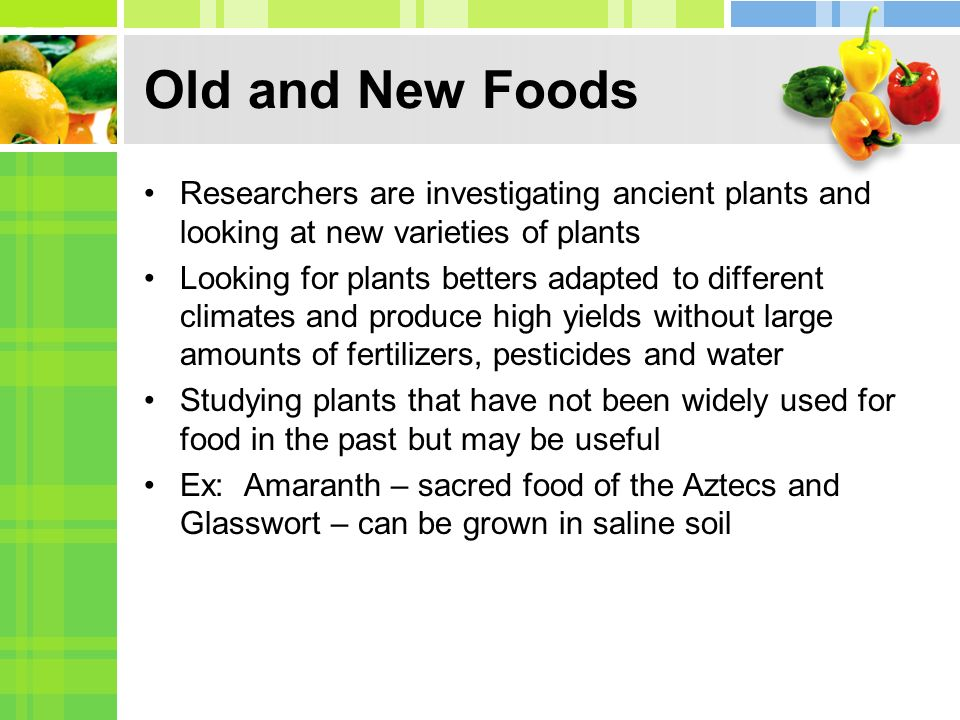 Old and New Foods Researchers are investigating ancient plants and looking at new varieties of plants.