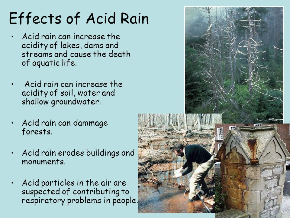 the cause and effects of acid rain Acid rain is a serious environmental problem occurring all over the world, particularly in large swaths of the united states and canada as the name suggests, it indicates precipitation that is more acidic than normal it is harmful not only to lakes, streams, and ponds in an area but also to the.