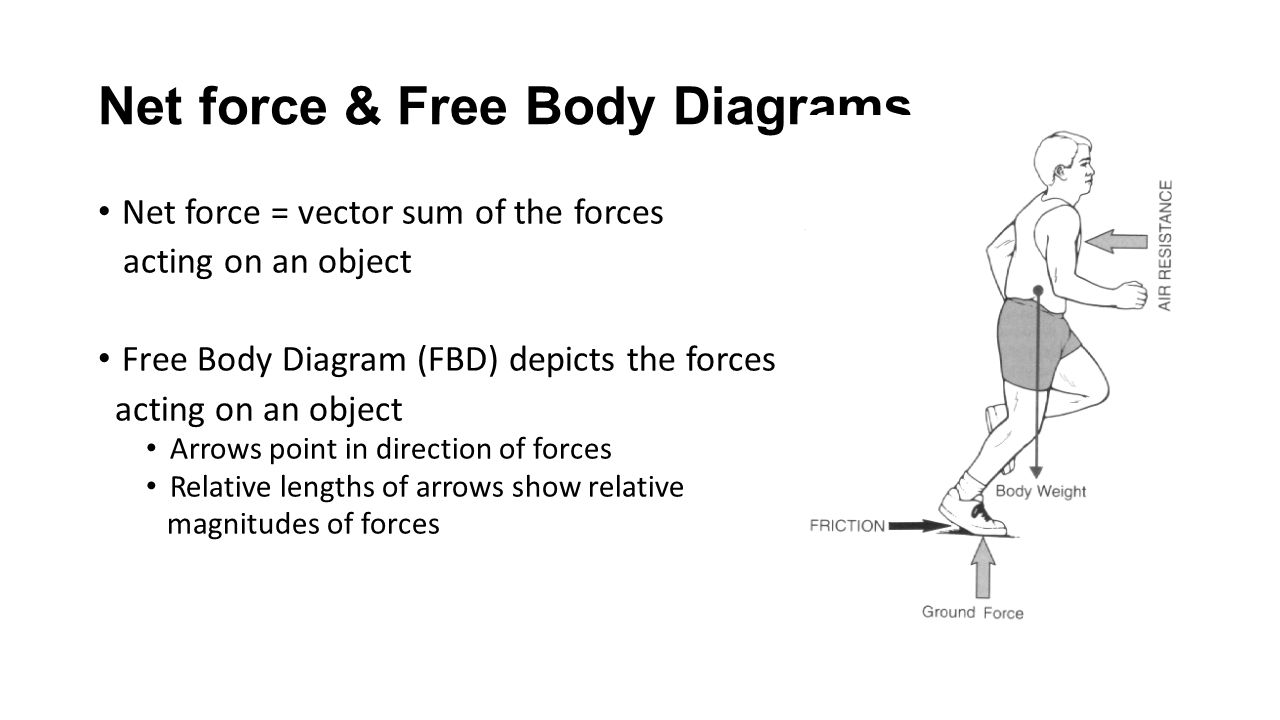 More about forces ppt video online download net force free body diagrams pooptronica