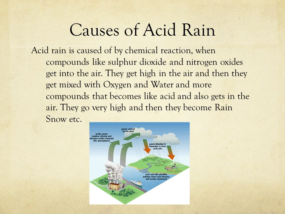what causes acid rain An effort to understand 'what causes acid rain' reveals the grim fact that it is the repercussion of the callous exploitation of nature by human beings the effects are, threat to aquatic life forms and forests that are essential for our survival.