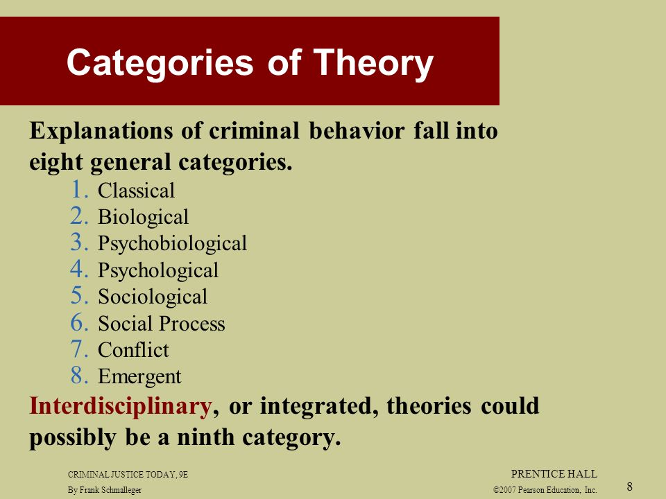 Criminal acts and choice theories response