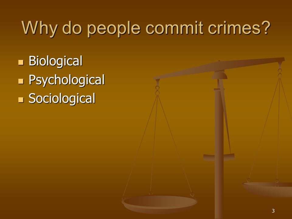 reasons why people commit homocide crimes Why do young men commit more crimes gender and age are arguably the two best predictors of crime in 2014, males accounted for 73 percent of all arrestees in the us and 80 percent of those arrested for violent crimes.