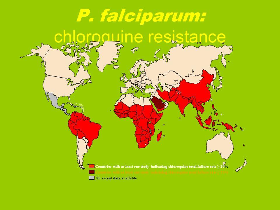 P. falciparum: chloroquine resistance