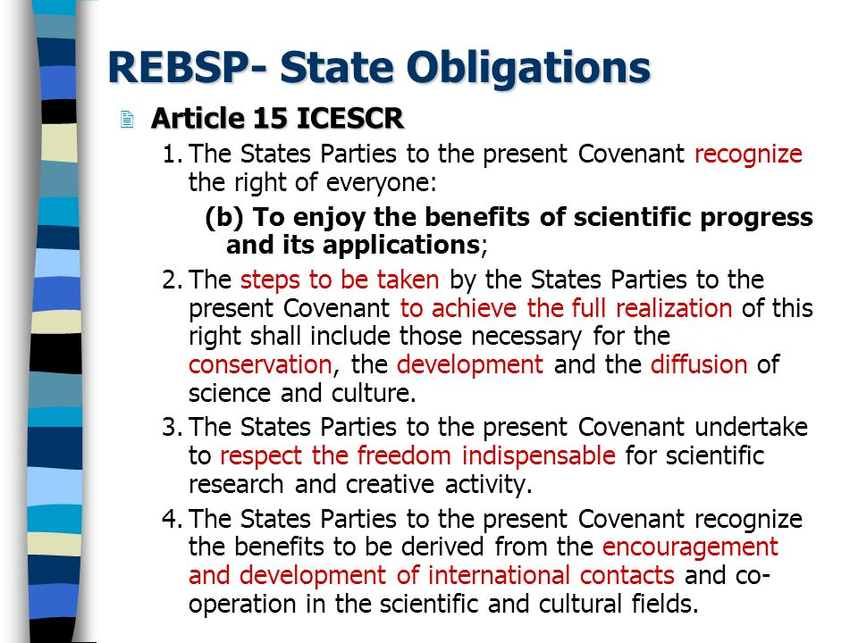 REBSP- State Obligations