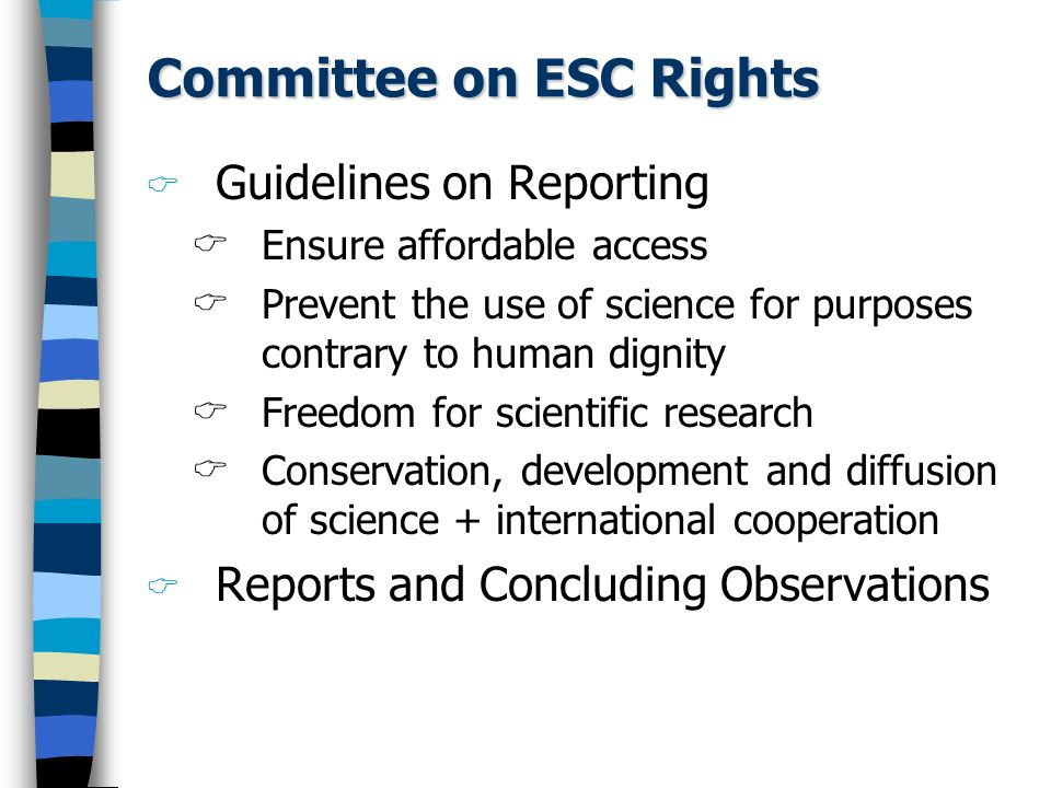 Committee on ESC Rights