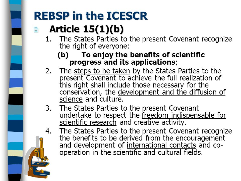 REBSP in the ICESCR Article 15(1)(b)