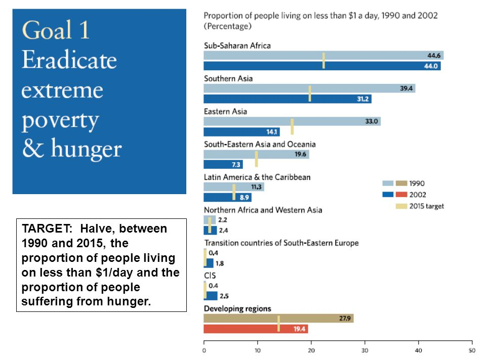 TARGET: Halve, between 1990 and 2015, the proportion of people living on less than $1/day and the proportion of people suffering from hunger.