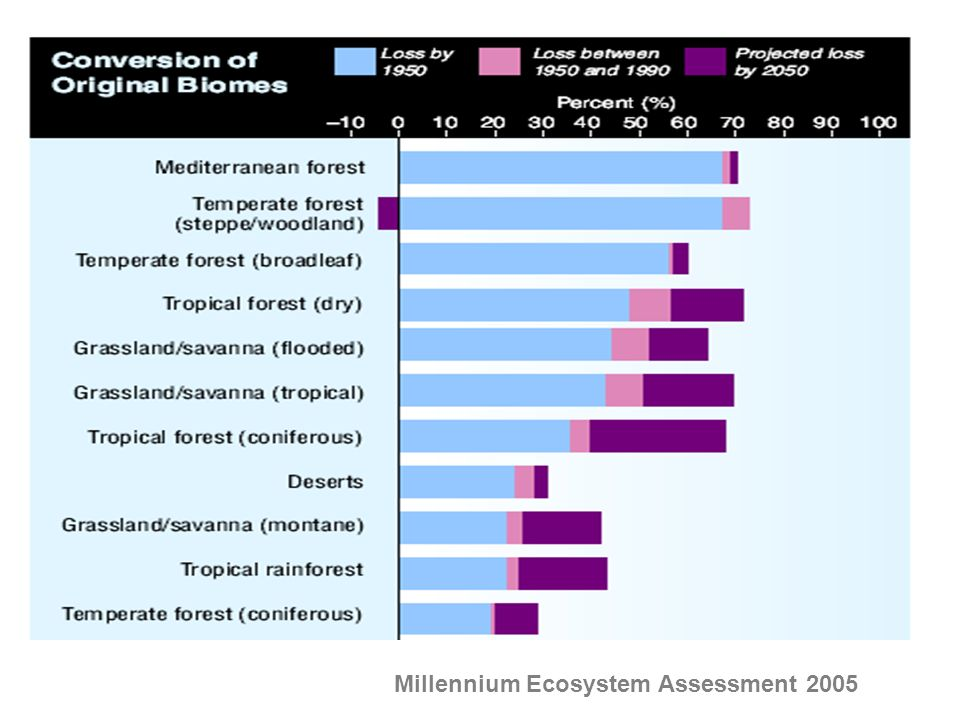 Millennium Ecosystem Assessment 2005