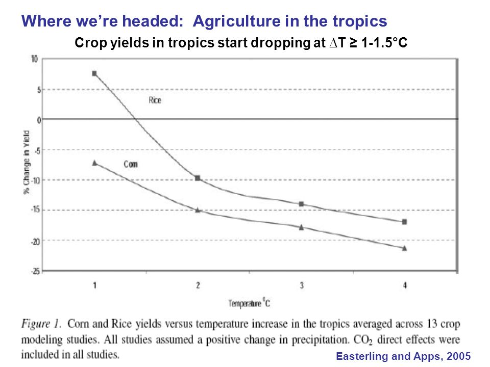Where we're headed: Agriculture in the tropics