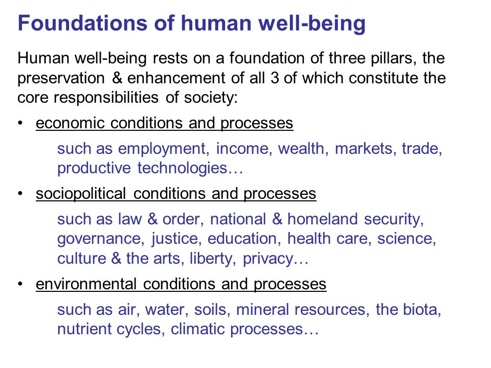 Foundations of human well-being