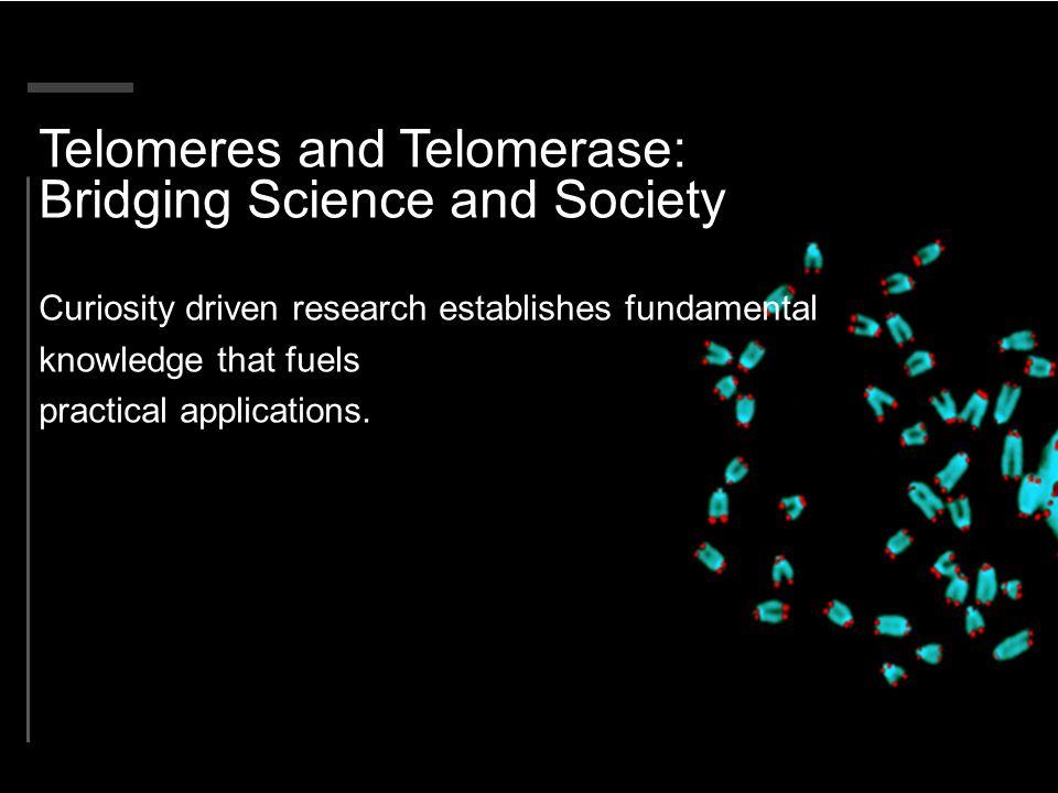 Telomeres and Telomerase: Bridging Science and Society
