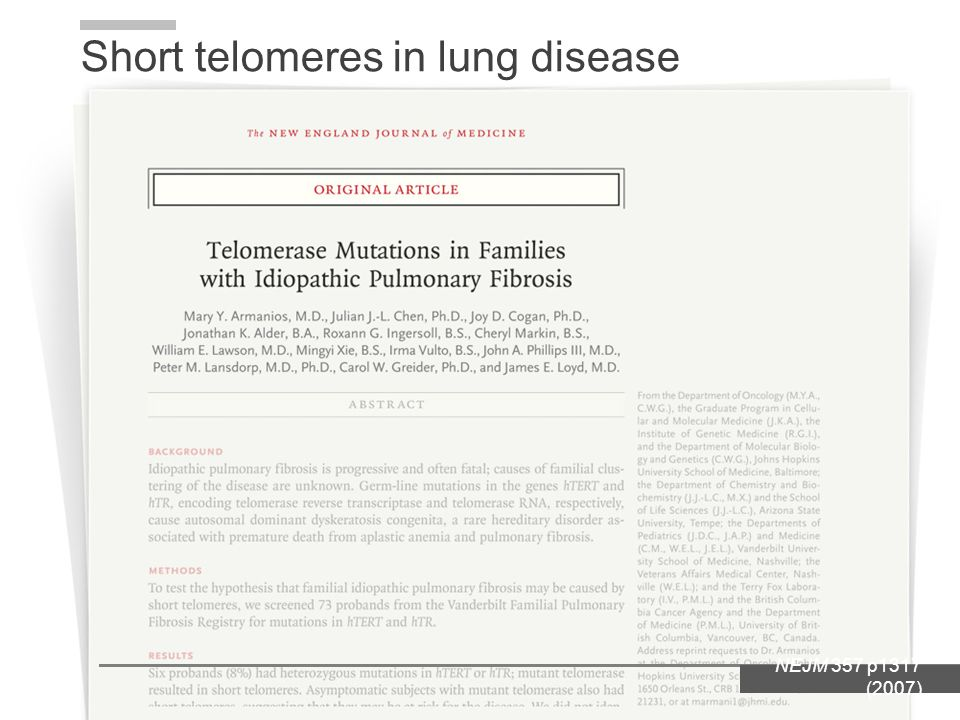 Short telomeres in lung disease