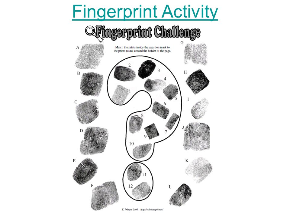 Exploring Fingerprints (Science for Kids) - Buggy and Buddy