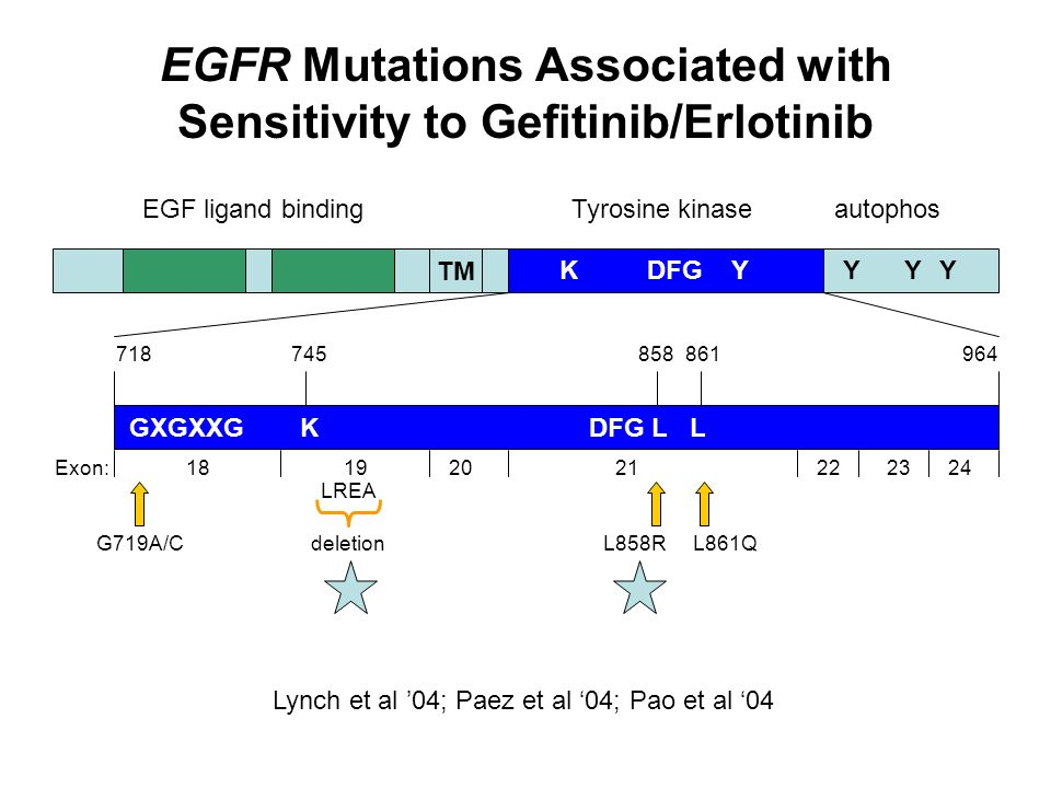 EGFR Mutations Associated with Sensitivity to Gefitinib/Erlotinib