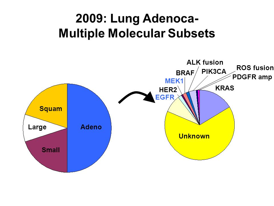 2009: Lung Adenoca- Multiple Molecular Subsets