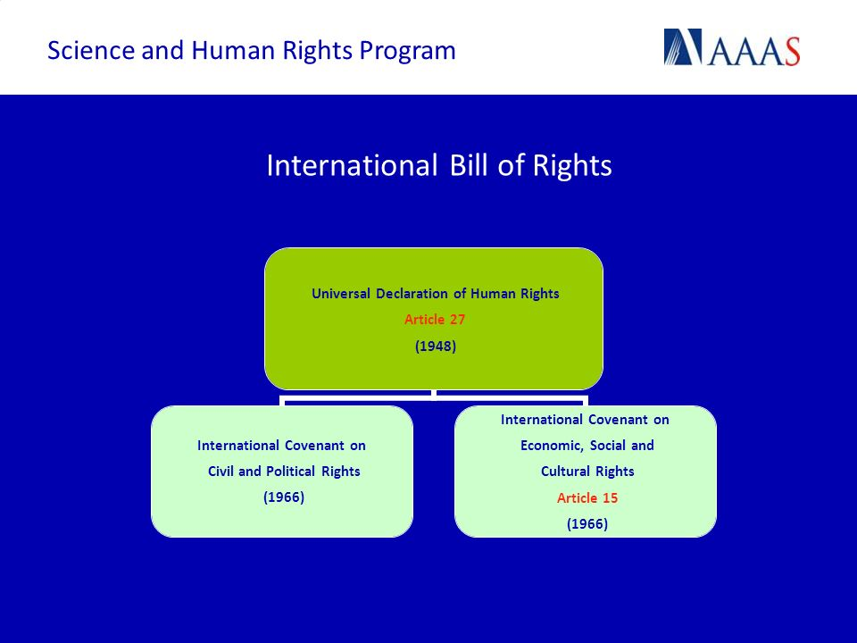 International Bill of Rights