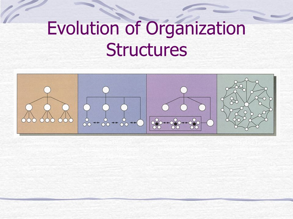 Evolution of Organization Structures