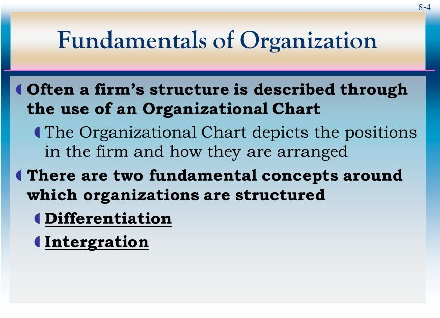 different fundamental of organizing chart: Organization structure ppt video online download