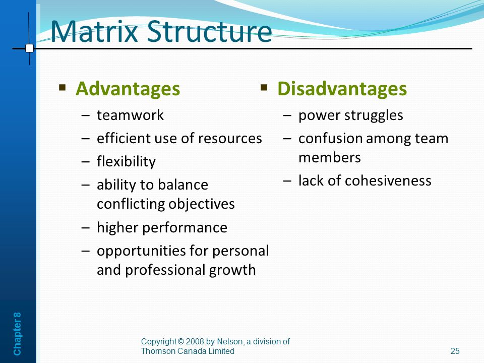 explain advantages and disadvantages matrix structure orga 11 what is an entrepreneurial structure 12 advantages & disadvantages of entrepreneurial  advantages & disadvantages of entrepreneurial structures  matrix.