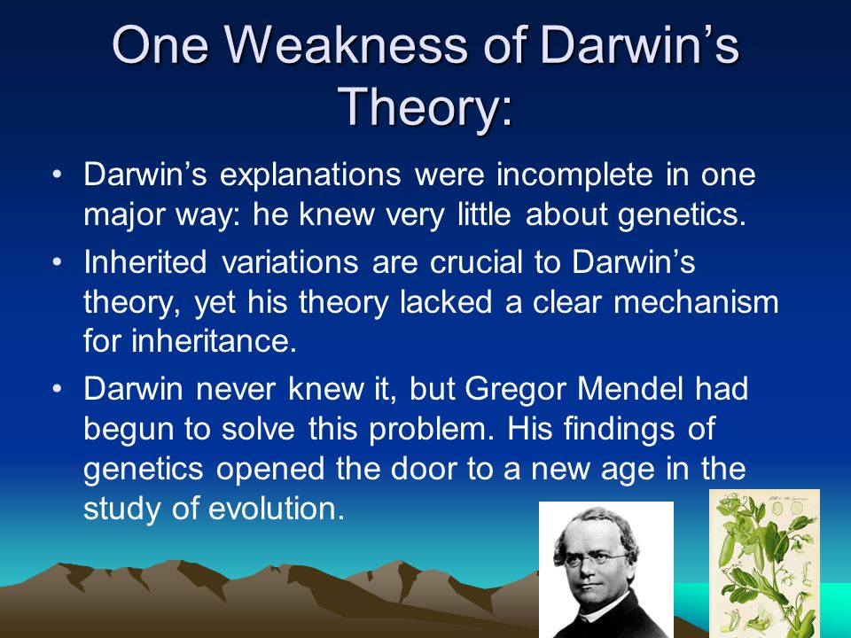 darwin s theory of evolution Mendel and darwin lived at the same time but never met - yet their ideas about of  the natural world would unite into a single revolutionary.