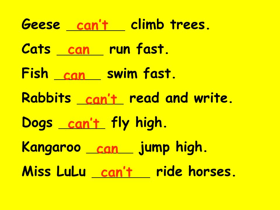 Geese climb trees. Cats run fast. Fish swim fast. Rabbits read and write.