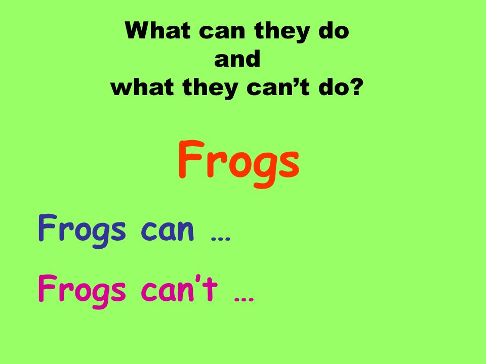 Frogs Frogs can … Frogs can't … What can they do and