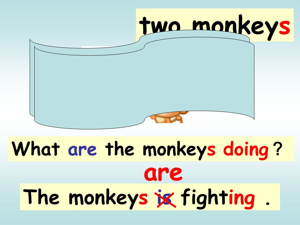 two monkeys What are the monkeys doing? are The monkeys is fighting .
