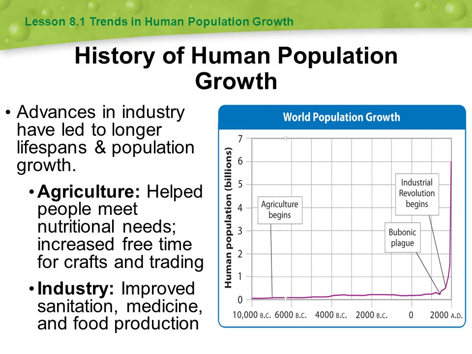 essay on human population growth The influence of population growth this essay has three objectives population growth and increased human density relate to economic well-being in the.
