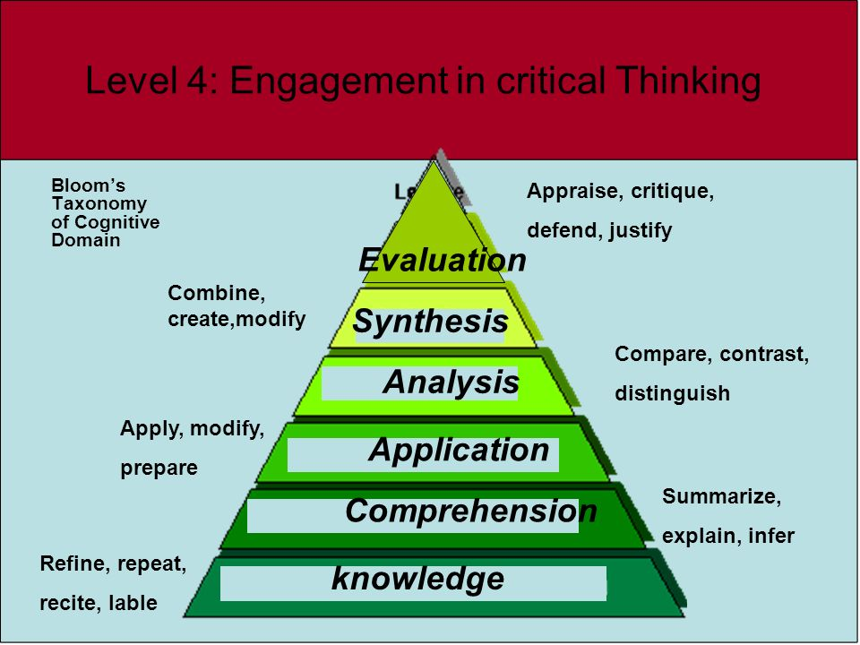 Level 4: Engagement in critical Thinking