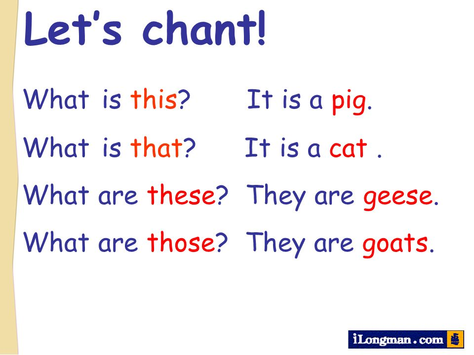 Let's chant! What is this It is a pig. What is that It is a cat .