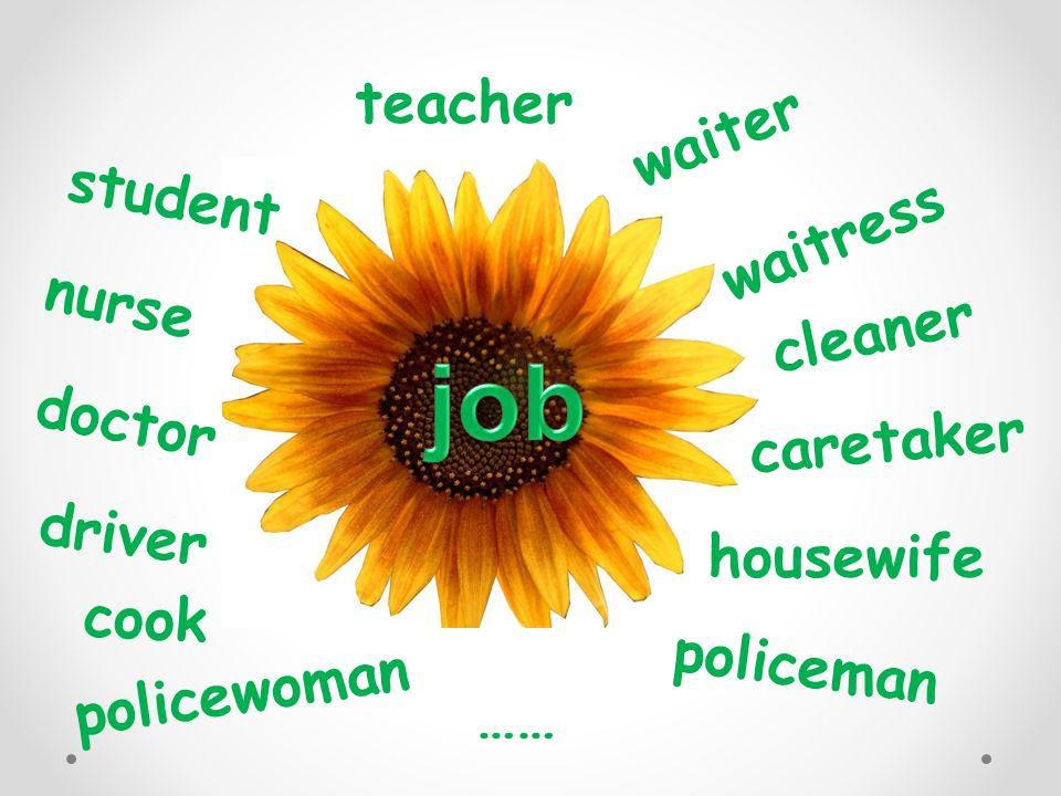 job teacher waiter student waitress nurse cleaner doctor caretaker