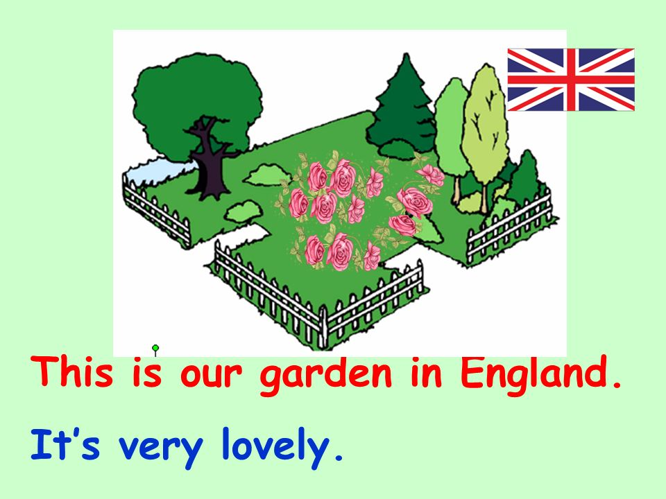 This is our garden in England.