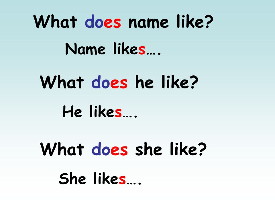 What does name like What does he like What does she like