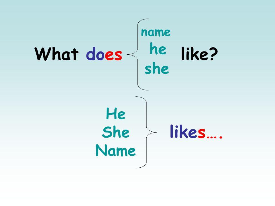 name he What does like she He She Name likes….