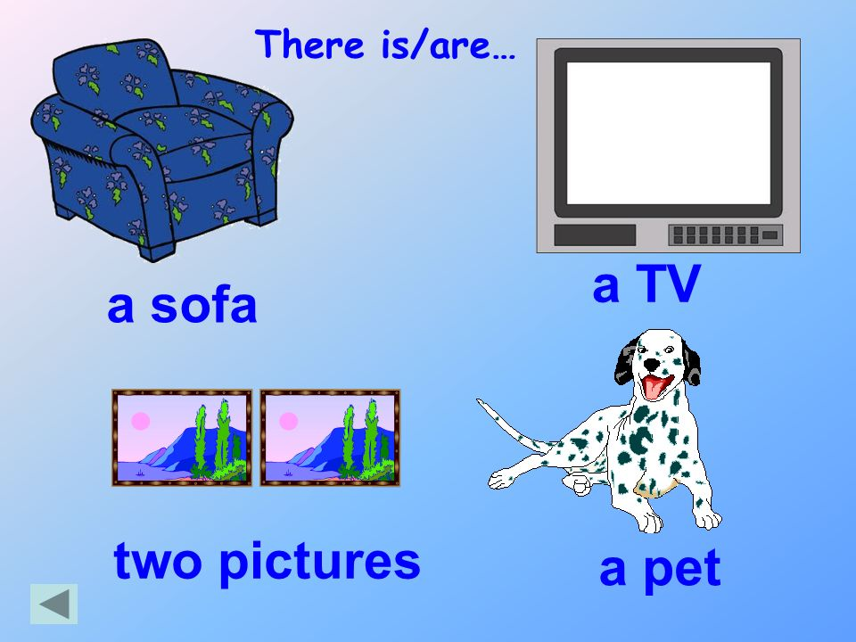 There is/are… a TV a sofa two pictures a pet
