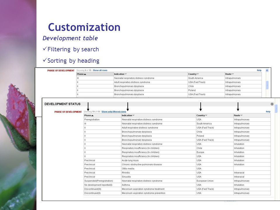 Customization Development table Filtering by search Sorting by heading
