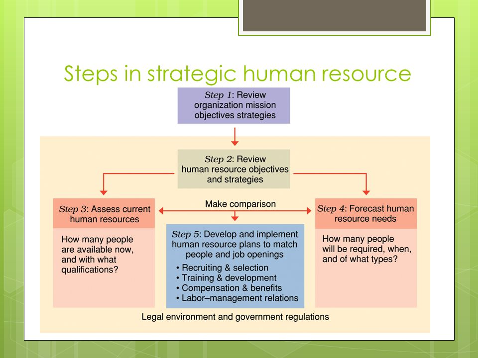 steps in hr planning process