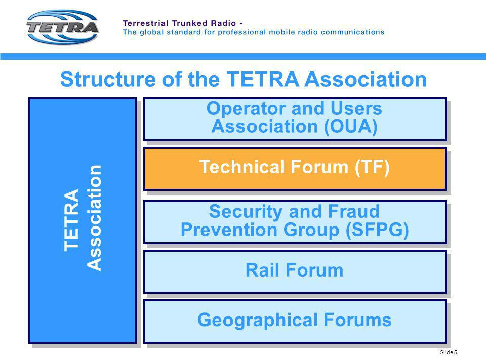Structure of the TETRA Association