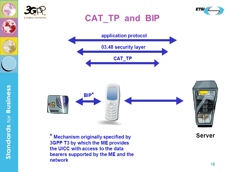 CAT_TP and BIP Server. CAT_TP security layer. application protocol. BIP*