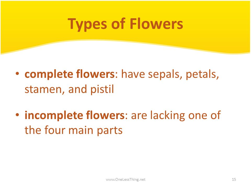 Types of Flowers complete flowers: have sepals, petals, stamen, and pistil. incomplete flowers: are lacking one of the four main parts.