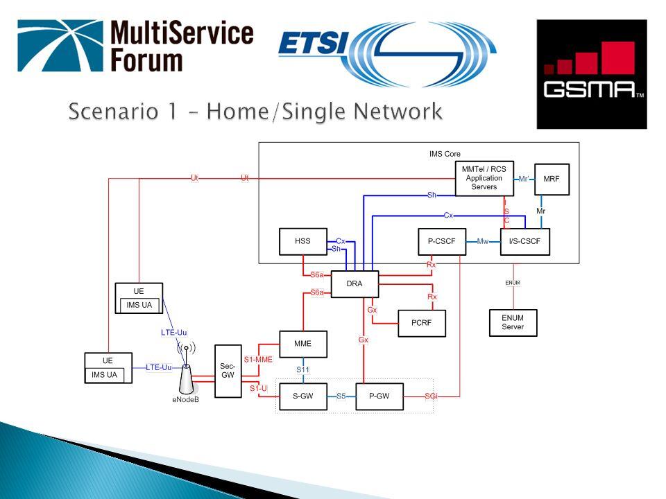 Scenario 1 – Home/Single Network