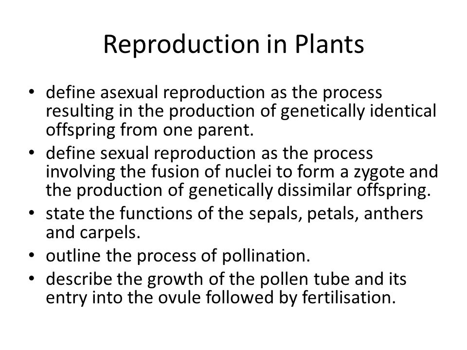 Meaning of sexual reproduction in plants