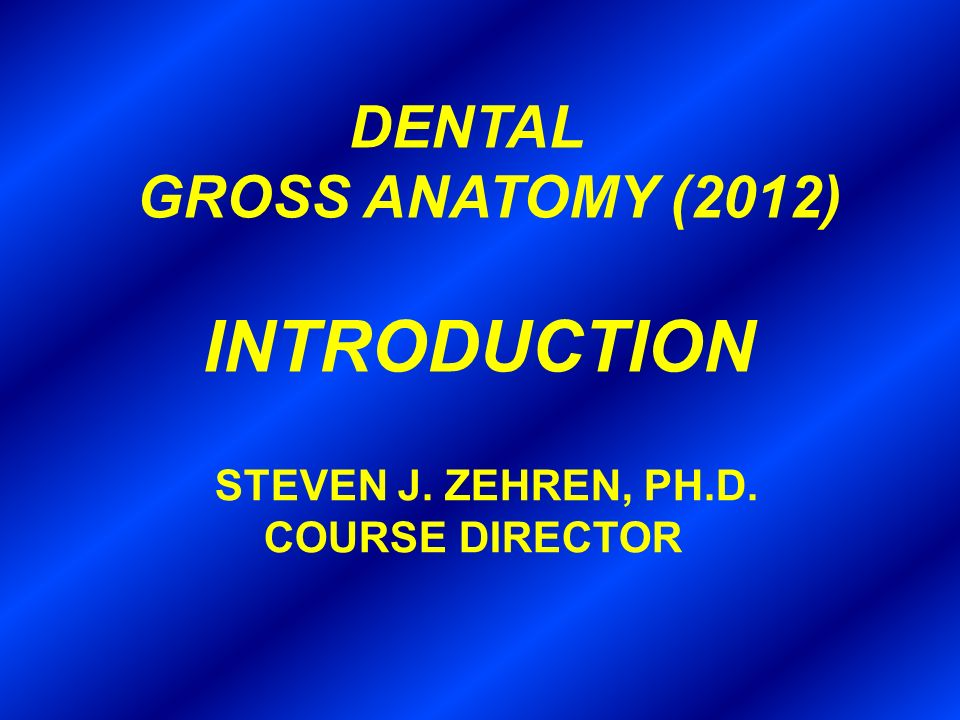 GROSS ANATOMY (2012) INTRODUCTION DENTAL COURSE DIRECTOR - ppt video ...